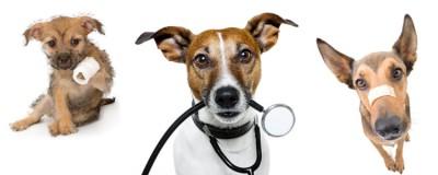 Tractaments médics
